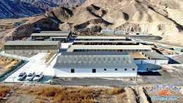 肅南:舍飼養殖讓致富不是夢