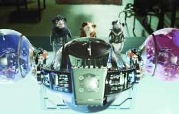 你沒看錯,呆萌的老鼠有天也能成為特工,這幾部電影搞笑非我莫屬